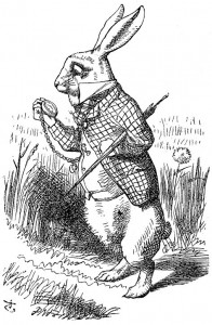 The late rabbit